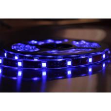 """Светодиодная лента SMD 3528 - 120 LED IP20 4-5Lm/led 9.6W 12V синий """"BIOM"""" (5м.)"""