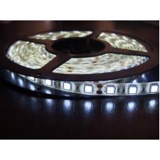 """Светодиодная лента SMD 3528 - 120 LED IP20 4-5Lm/led 9.6W 12V белый """"BIOM"""" (5м.)"""